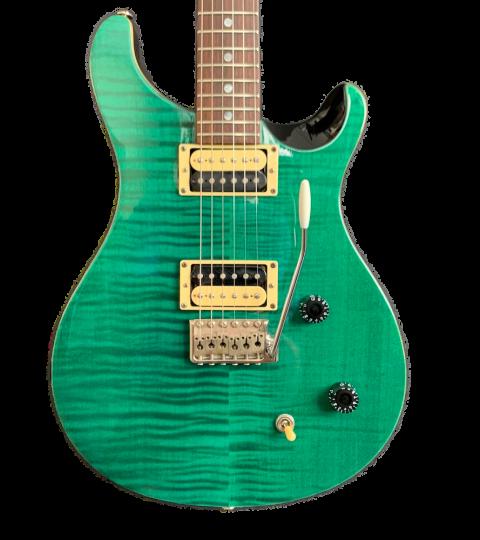 PRS SE Custom 22 Emerald Green 2006