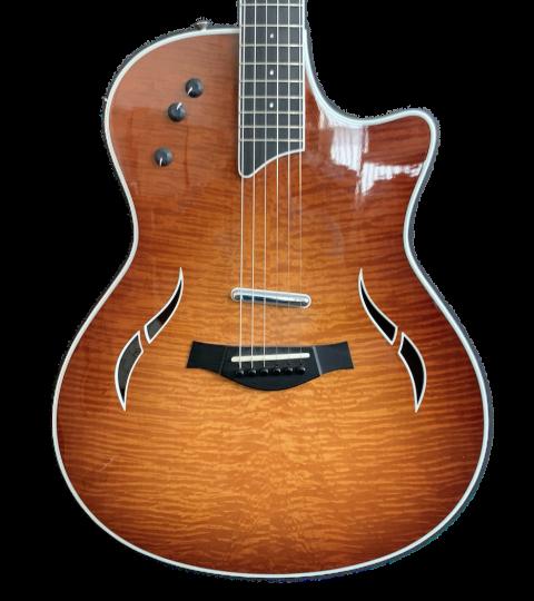 Taylor T5 Pro 2011